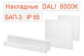 Накладные офисные светодиодные светильники DALI-BAP-3 IP65 Холодные