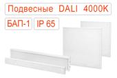 Подвесные офисные светодиодные светильники DALI-BAP-1 IP65 Нейтральные
